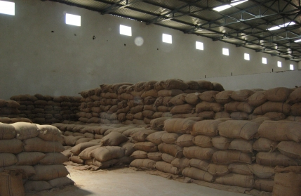 Food Processing Business for Sale in Jaipur
