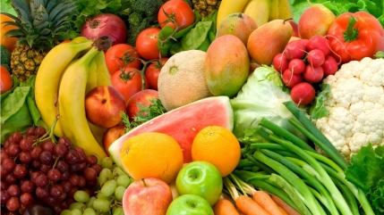 Franchises Available for Online Grocery Store in Gujarat