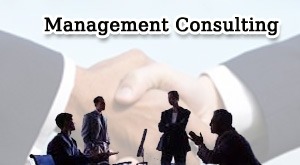 Management Consultancy Business for Sale in India