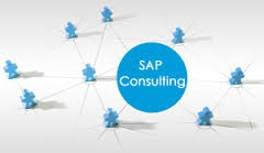 SAP Consultancy looking for Equity Partner