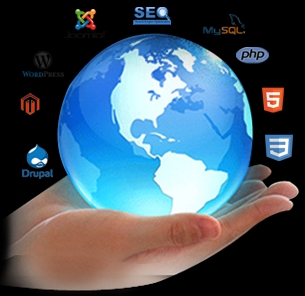 Software and Web Development Company for Sale in Pune